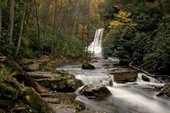 Cascata della foresta Fotografie Stock