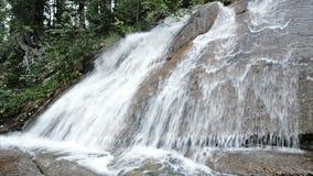 Cascata della foresta al parco naturale di Ergaki, Russia stock footage