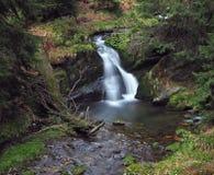 Cascata della foresta in montagna jeseniky sul fiume di opava di bila fotografia stock