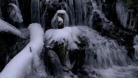 Cascata della foresta nell'inverno stock footage