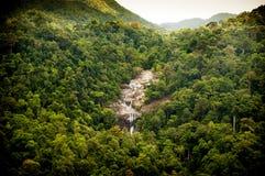 Cascata della giungla Fotografie Stock