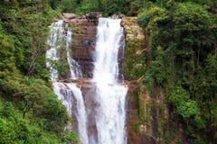 Cascata della giungla Fotografia Stock