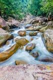 Cascata della giungla con acqua corrente, grandi rocce Immagine Stock