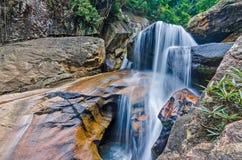 Cascata della giungla con acqua corrente, grandi rocce Immagini Stock