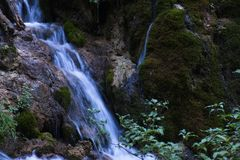 Cascata della montagna di Colorado con i lotti di paesaggio verde fresco fotografia stock libera da diritti