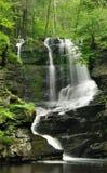 Cascata della Pensilvania in primavera fotografia stock libera da diritti