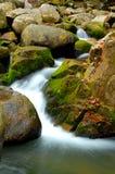 Cascata della roccia con muschio Immagine Stock