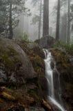 Cascata della sequoia fotografia stock