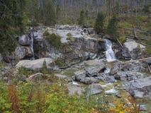 Cascata della cascata sul potok studeny con i massi, della corrente selvaggia del fiume albero colorato autunno alla valle Velka  immagine stock