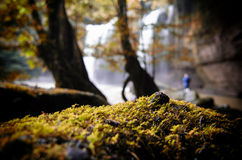 Cascata della Tailandia Fotografia Stock