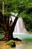 Cascata della Tailandia Fotografie Stock Libere da Diritti