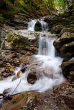 Cascata della torrente montano Faltenbach in alpi tedesche Fotografia Stock