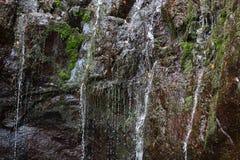 Cascata della traccia di escursione di Levada di venticinque fontane, Madera di Risco Immagini Stock Libere da Diritti