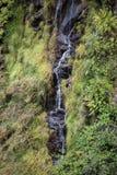 Cascata della traccia di escursione di Levada di venticinque fontane, Madera di Risco Fotografia Stock Libera da Diritti