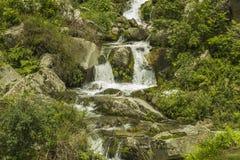 Cascata delle cascate nella foresta fra le pietre fotografia stock libera da diritti