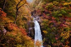 Cascata di Akiu, Akiu Otaki Fotografia Stock Libera da Diritti