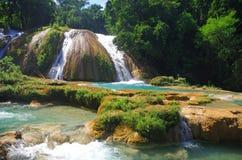 Cascata di Aqua Azul, il Chiapas, Messico Fotografie Stock