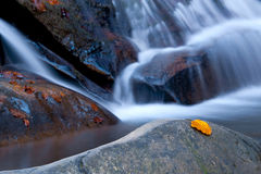 Cascata di autunno Fotografie Stock