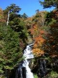 Cascata di autunno fotografia stock libera da diritti