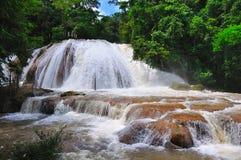 Cascata di Azul del Agua, Messico Fotografia Stock Libera da Diritti