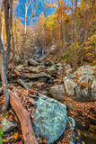 Cascata di caduta delle acque, Ridge Parkway blu, la Virginia Immagine Stock