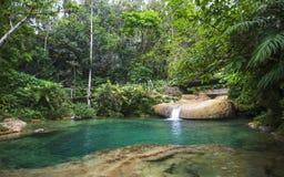 Cascata di EL Nicho, situata nella sierra montagne di del Escambray non lontano da Cienfuegos fotografia stock libera da diritti
