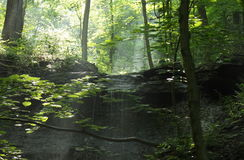 Cascata di estate nella foresta Fotografie Stock