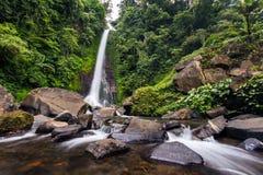 Cascata di Gitgit in Bali, Indonesia Fotografie Stock Libere da Diritti