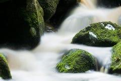 Cascata di Glencree fotografie stock libere da diritti
