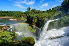 Cascata di Iguazu in Argentina Fotografia Stock
