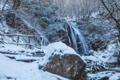 Cascata di inverno Fotografia Stock Libera da Diritti