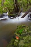 Cascata di MAI di Pha Kluay Fotografie Stock