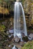 Cascata di Melincourt Alta cascata tranquilla Fotografie Stock Libere da Diritti