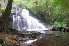 Cascata di Pangsida Immagini Stock