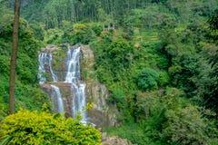 Cascata di Ramboda nello Sri Lanka Fotografia Stock Libera da Diritti