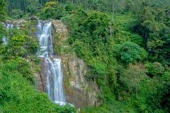 Cascata di Ramboda nello Sri Lanka Fotografie Stock Libere da Diritti