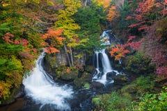 Cascata di Ryuzu in autunno la maggior parte del favorito per il turista a Nikko, fotografia stock libera da diritti