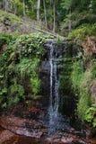 Cascata di Sankenbach in Baiersbronn immagini stock