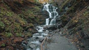 Cascata di schiumatura pittorica vicino al percorso a terra grigio in autunno stock footage