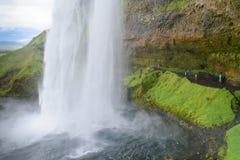 Cascata di Seljalandsfoss Immagine Stock Libera da Diritti