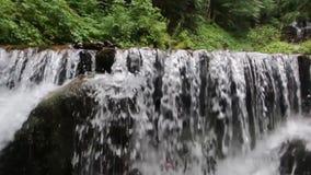 Cascata di Shidot, una di cascate più belle nei Carpathians ucraini video d archivio