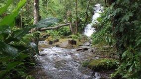 Cascata di Siriphum video d archivio