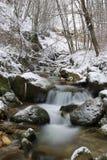 Cascata di un flusso Fotografie Stock