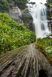 Cascata di Vachiratharn in chiangmai Tailandia Fotografia Stock