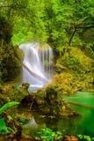 Cascata di Vaioaga della La, parco nazionale di Beusnita Fotografia Stock