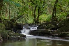 Cascata di Waterford Fotografia Stock
