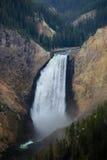 Cascata di Yellowstone Fotografie Stock