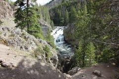 Cascata di Yellowstone Immagine Stock Libera da Diritti