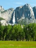 Cascata di Yosemite Immagine Stock