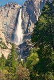 Cascata di Yosemite soffiata vento Fotografia Stock Libera da Diritti